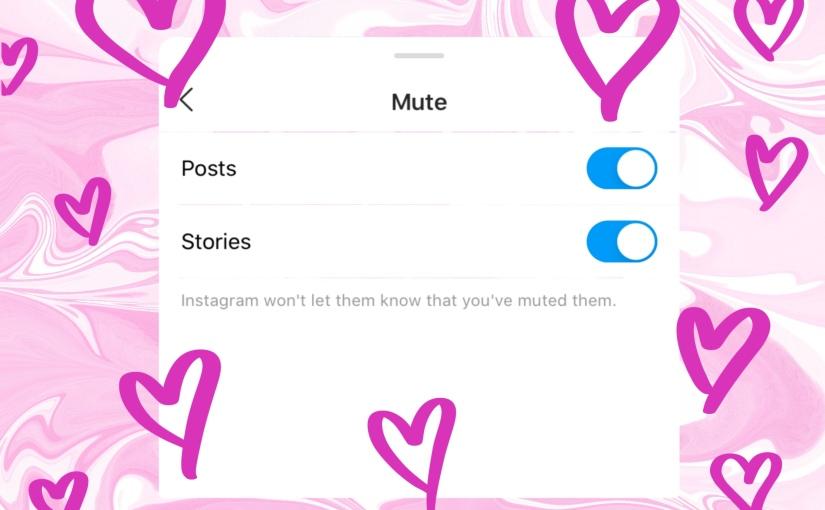 The Politics of Muting on SocialMedia